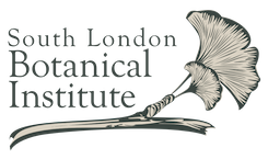 south-london-botanical-institute-logo