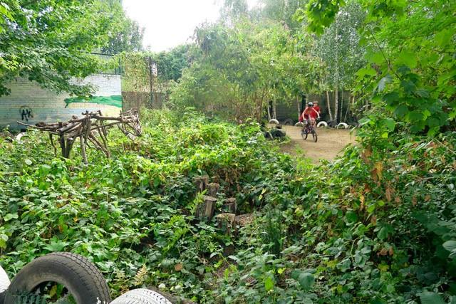 Oasis Nature Garden