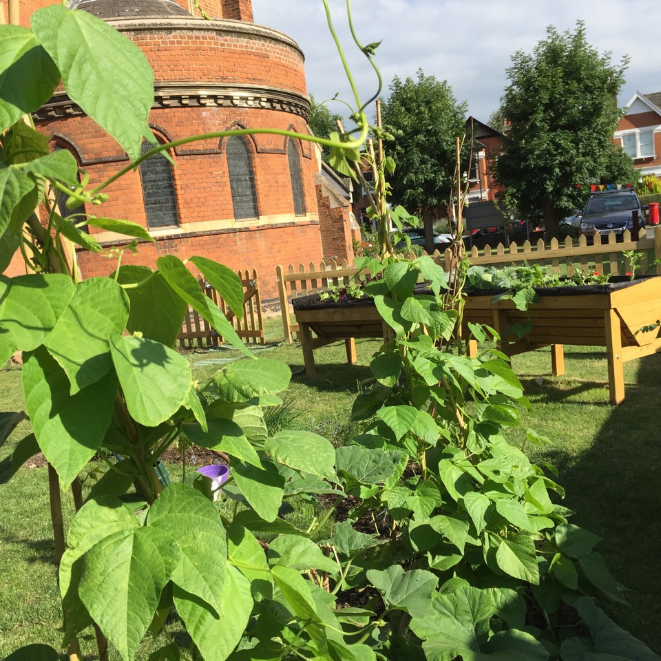St Thomas' Community Garden