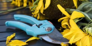 Garden Tool Repair and Sharpening Workshop